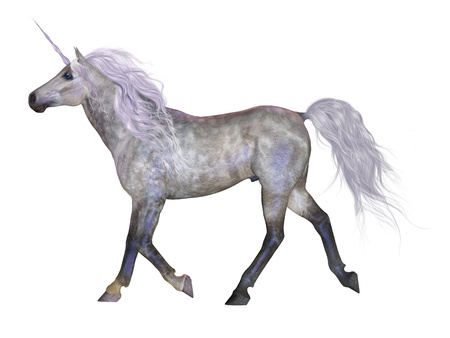 forehead: Unicorn on White - The Unicorn is a mythical creature that was usually a white horse with a horn on its forehead