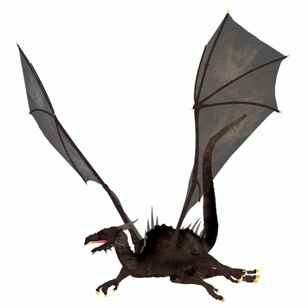 flying dragon: Black Dragon - A creature of myth and fantasy the dragon is a fierce flying monster with horns and large teeth