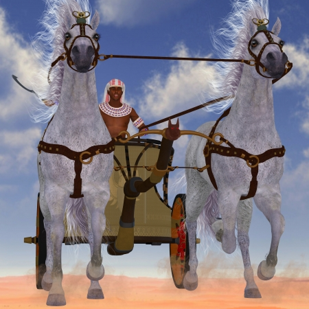 chariot: Egyptian Chariot - An Egyptian man takes his team of Arabian horses hitched to a chariot out in the desert