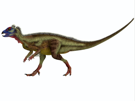 omnivorous: Hypsilophodon on White - Hypsilophodon is an ornithopod dinosaur from the Early Cretaceous period of Europe