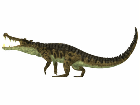 cretaceous: Kaprosuchus Profile - Kaprosuchus is an extinct genus of crocodile from the Upper Cretaceous of Niger, Africa