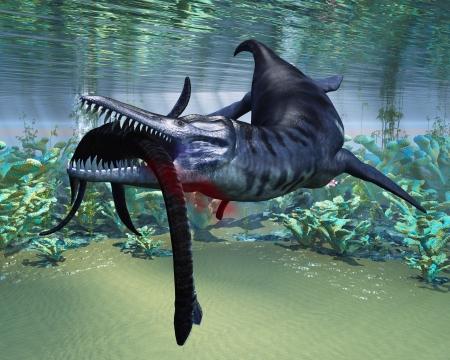 aquatic reptile: Liopleurodon attacks Plesiosaurus - A hapless Plesiosaurus becomes a meal for the much larger Liopleurodon aquatic reptile  Stock Photo