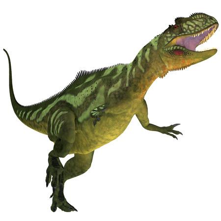 jurassic: Yangchuanosaurus on White - Yangchuanosaurus was a theropod dinosaur that lived in China during the Late Jurassic Era  Stock Photo