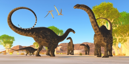 Apatosaurus Forest - Two Pterosaurs fly over a herd of Apatosaurus dinosaurs as they wonder through a prehistoric forest