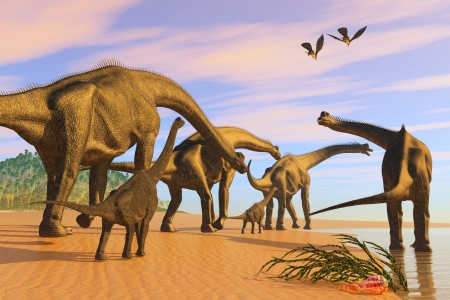 brachiosaurus: Brachiosaurus Beach - A Brachiosaurus herd walks down a wet sandy beach in search of vegetation to eat