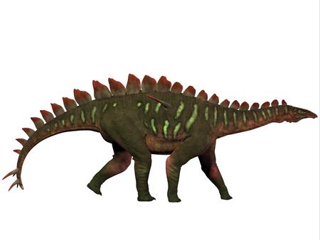 mesozoic: Miragaia Profile - Miragaia is a genus of stegosaurid dinosaur that lived in the Upper Jurassic Era