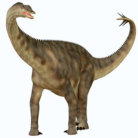 sauropod: Spinophorosaurus sobre blanco - Spinophorosaurus es un dinosaurio saur�podo de N�ger que vivi� en el Per�odo Jur�sico