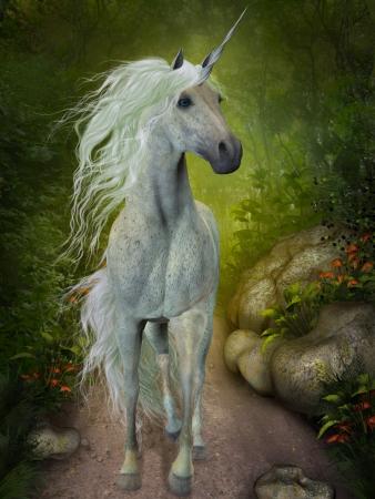 brute: White Unicorn - un bel bianco Unicorn trotterella lungo un sentiero nel bosco in cerca di compagni Archivio Fotografico