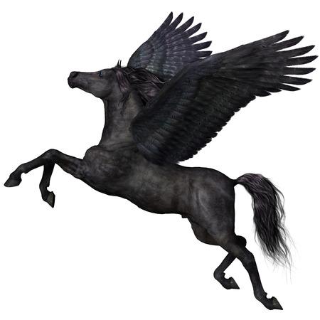 brute: Black Pegasus Profilo - Un magico nero Pegasus spiega le ali e vola verso il cielo