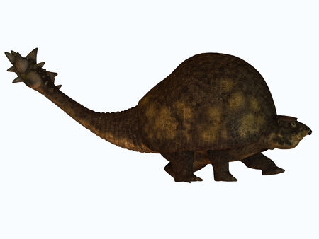 carapace: Glyptodont on White - The Glyptodont lived during the Pleistocene Era and carried around a protective carapace like the present day turtle