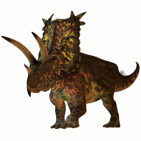 cretaceous: Pentaceratops on White - Pentaceratops was a herbivore dinosaur that lived in North America in the Cretaceous Period