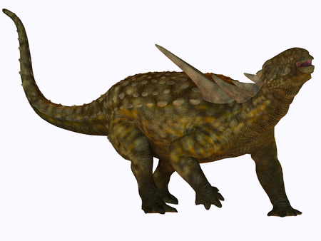 herbivorous: Sauropelta on White - Sauropelta was a herbivore dinosaur that lived in river floodplains of North America in the Cretaceous Period