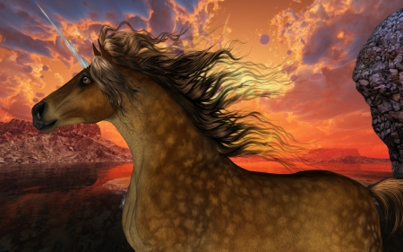 brute: Unicorn Sunset - A beautiful dappled buckskin unicorn prances with its wild mane flowing and muscles shining  Stock Photo