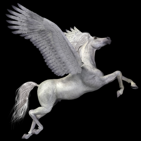 White Pegasus Profile - A magical white Pegasus spreads its wings and flies up into the sky