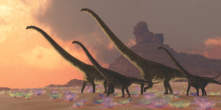 youngsters: Two youngsters accompany two older adult Mamenchisaurus dinosaurs