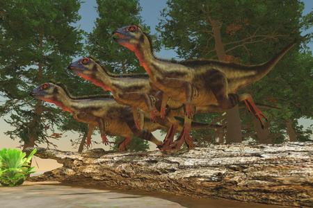 omnivorous: Hypsilophodon Dinosaurs - Hypsilophodon was a herbivorous dinosaur from the Jurassic and Cretaceous Eras