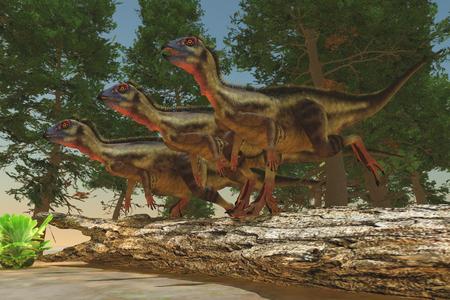 Hypsilophodon Dinosaurs - Hypsilophodon was a herbivorous dinosaur from the Jurassic and Cretaceous Eras