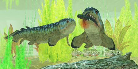 carboniferous: Carboniferous Rhizodus Fish - Rhizodus hibberti is an extinct group of Carboniferous predatory lobe-finned fish  Stock Photo