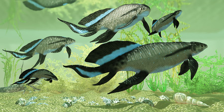 devonian: Scaumenacia cuta in Estuary - Scuamenacia is an extinct lobe-finned fish from Quebec, Canada in the Upper Devonian Era