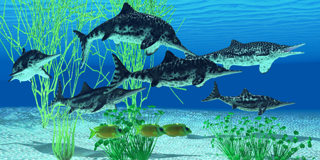 extinct: Stenopterygius Ichthyosaur - Stenopterygius is an extinct icthyosaur from the Jurassic Age of Europe