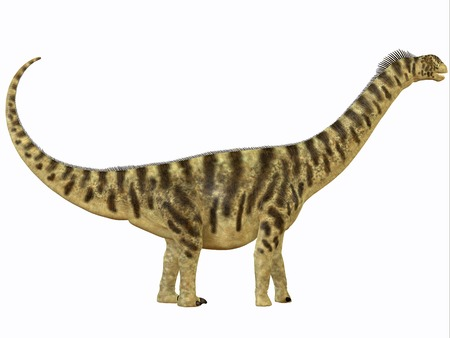 herbivorous: Camarasaurus Profile - Camarasaurus was a sauropod dinosaur that lived in North America in the Jurassic Age