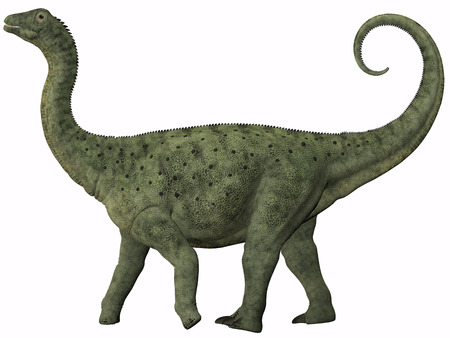 behemoth: Saltasaurus Juvenile - Saltasaurus was a sauropod dinosaur of the Cretaceous Period of Argentina