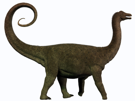 Saltasaurus Profile - Saltasaurus was a sauropod dinosaur of the Cretaceous Period of Argentina