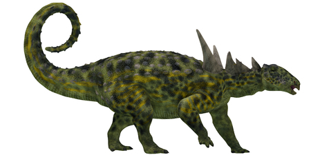 mesozoic: Sauropelta Profile on White - Sauropelta was heavily armored dinosaur from the Cretaceous Period of North America