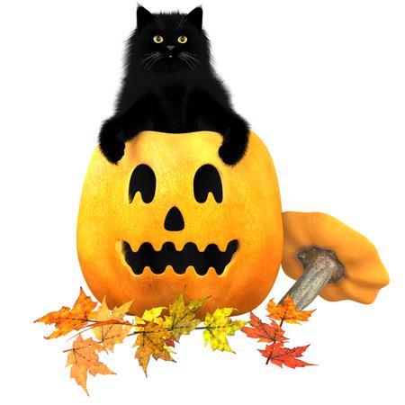molly: Black Cat Pumpkin Autumn Leaves