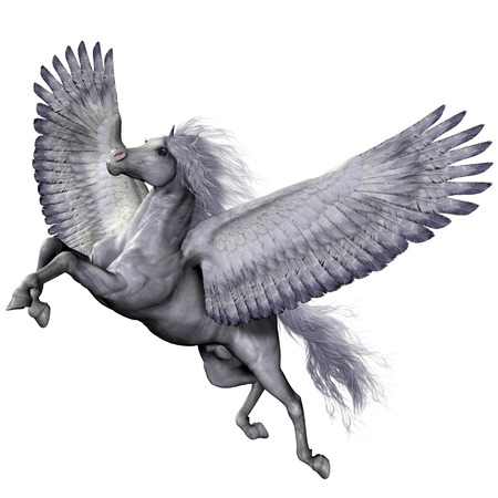 pegasus: Silver Winged Pegasus Stock Photo