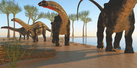 sauropod: Apatosaurus Dinosaur Shore - A herd of Apatasaurus dinosaurs wander back to the forest after their morning drink at a lake  Stock Photo