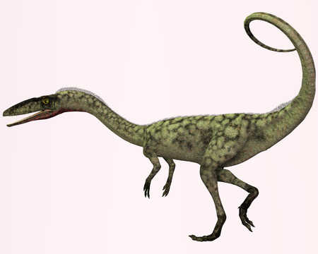 triassic: Coelophysis Profile - Coelophysis is the earliest known dinosaur  It was a carnivorous theropod that lived in North America during the Triassic Period  Stock Photo