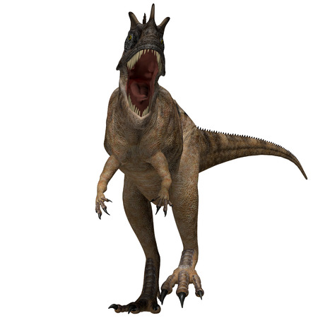 Ceratosaurus Dinosaur Profile - The Ceratosaurus is a horned theropod dinosaur found in North America from the Jurassic Period  Stock Photo
