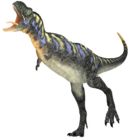 cretaceous: Aggressive Aucasaurus Dinosaur - Aucasaurus was a predatory dinosaur from the Cretaceous Period in Argentina and a close relative of Carnotaurus. Stock Photo