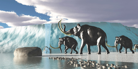 woolly: Glacier Mammoths - A herd of Woolly Mammoths encounter a huge glacier covering the Arctic territory.
