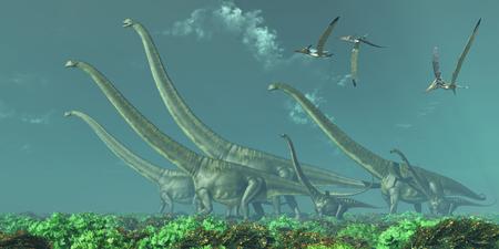 era: Mamenchisaurus Dinosaur Travels - Pteranodon reptiles fly over a herd of Mamenchisaurus dinosaurs in the Cretaceous Era.