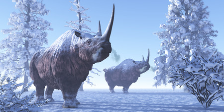 Woolly Rhino - Woolly Rhino males keep each other company during a snowy winter in the Pleistocene Period.