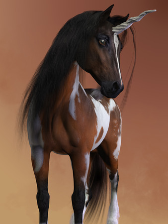 A bay pinto unicorn has the small body and fine features of the Arabian horse breed. Imagens