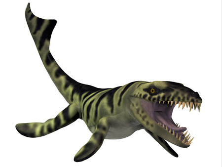 sea creatures: Dakosaurus Dinosaur - Dakosaurus marine reptile lived from the Jurassic into the Cretaceous Era and was a carnivore. Stock Photo