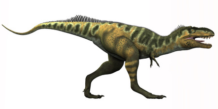 Bistahieversor Dinosaur - Bistahieversor is a genus of tyrannosauroid dinosaur that lived in New Mexico during the Cretaceous Period.