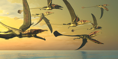 an era: Eudimorphodon Dinosaur Flock - A flock of Eudimorphodon flying reptiles search for fish prey in the Triassic Era.