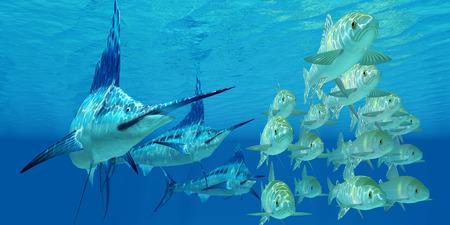 Marlin aanval Ayu Vis - Een school van de oceaan Ayu vis proberen te ontsnappen uit drie vleesetende Blue Marlin vis. Stockfoto