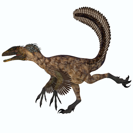 deinonychus: Deinonychus over White - Deinonychus was a carnivorous dinosaur that lived in the Cretaceous period of North America. Stock Photo