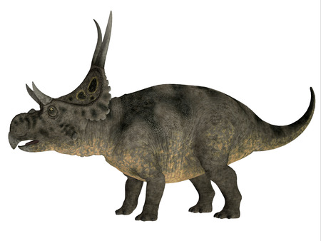Diabloceratops over White - Diabloceratops was a herbivore dinosaur that lived in the Cretaceous Era of Utah in North America.