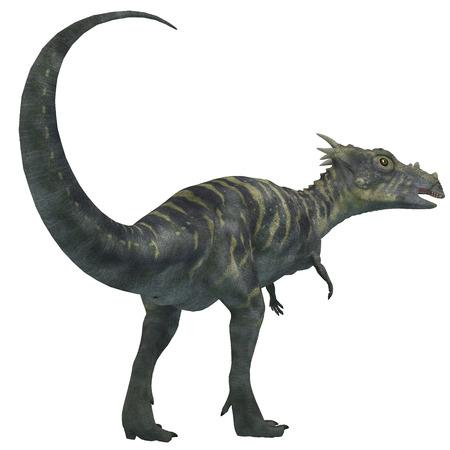 vertebrates: Dracorex Dinosaur on White - Dracorex was a herbivorous dinosaur that lived in the Cretaceous Period of North America.
