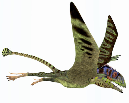 triassic: Peteinosaurus Dinosaur - Peteinosaurus was a small carnivorous pterosaur from the Triassic Period and was found near Cene, Italy.