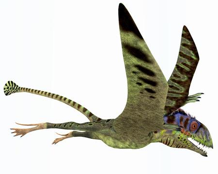 Peteinosaurus Dinosaur - Peteinosaurus était un petit ptérosaure carnivore de la période du Trias et a été trouvé près Cene, Italie.