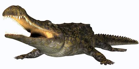 Sarcosuchus Reptile - Sarcosuchus es un género extinto de cocodrilo carnívoro que vivió en el Período Cretácico de África. Foto de archivo - 37551497