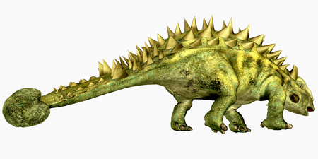 bony: Talarurus Bony Tail - Talarurus was a herbivorous dinosaur with a club tail that lived in the Cretaceous Period of Mongolia. Stock Photo