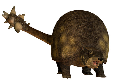 herbivorous: Glyptodont over White - Glyptodont was a large herbivorous mammal that lived in the Pleistocene Period of North and South America. Stock Photo